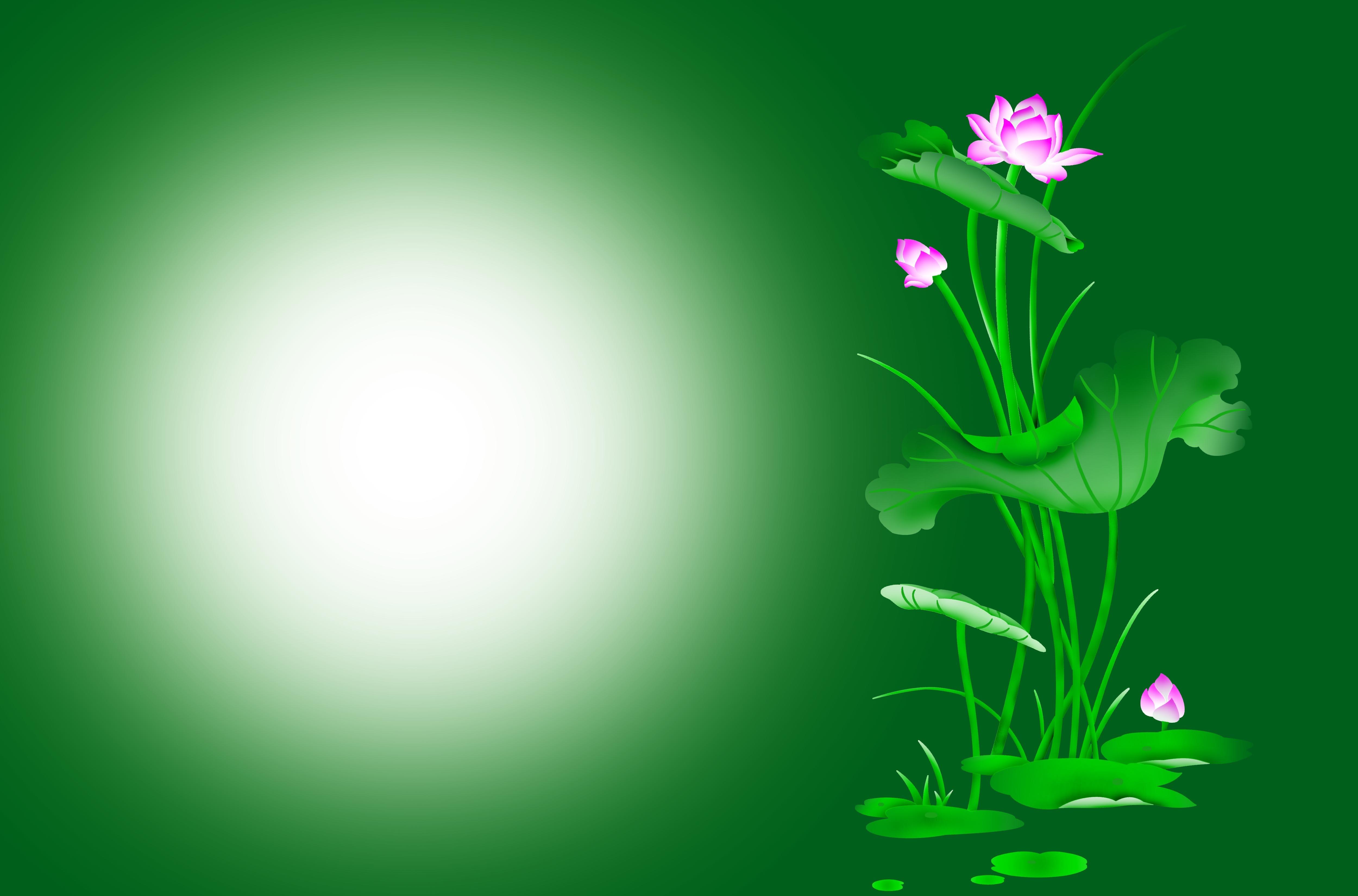 Background hoa lá sen