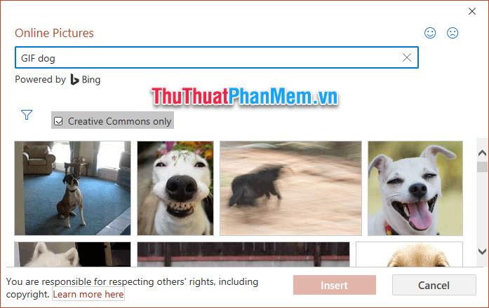 Chỉ khi tìm kiếm kèm từ khóa GIF thì các bạn mới lọc được các kết quả ảnh động để lựa chọn chèn vào slide của mình