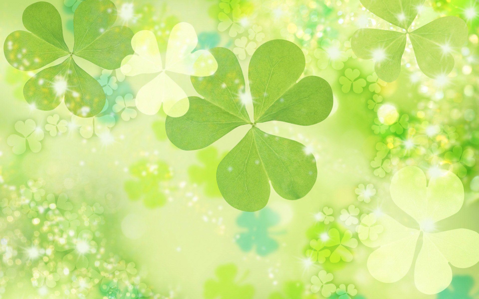Hình ảnh background hoa cỏ 3 lá