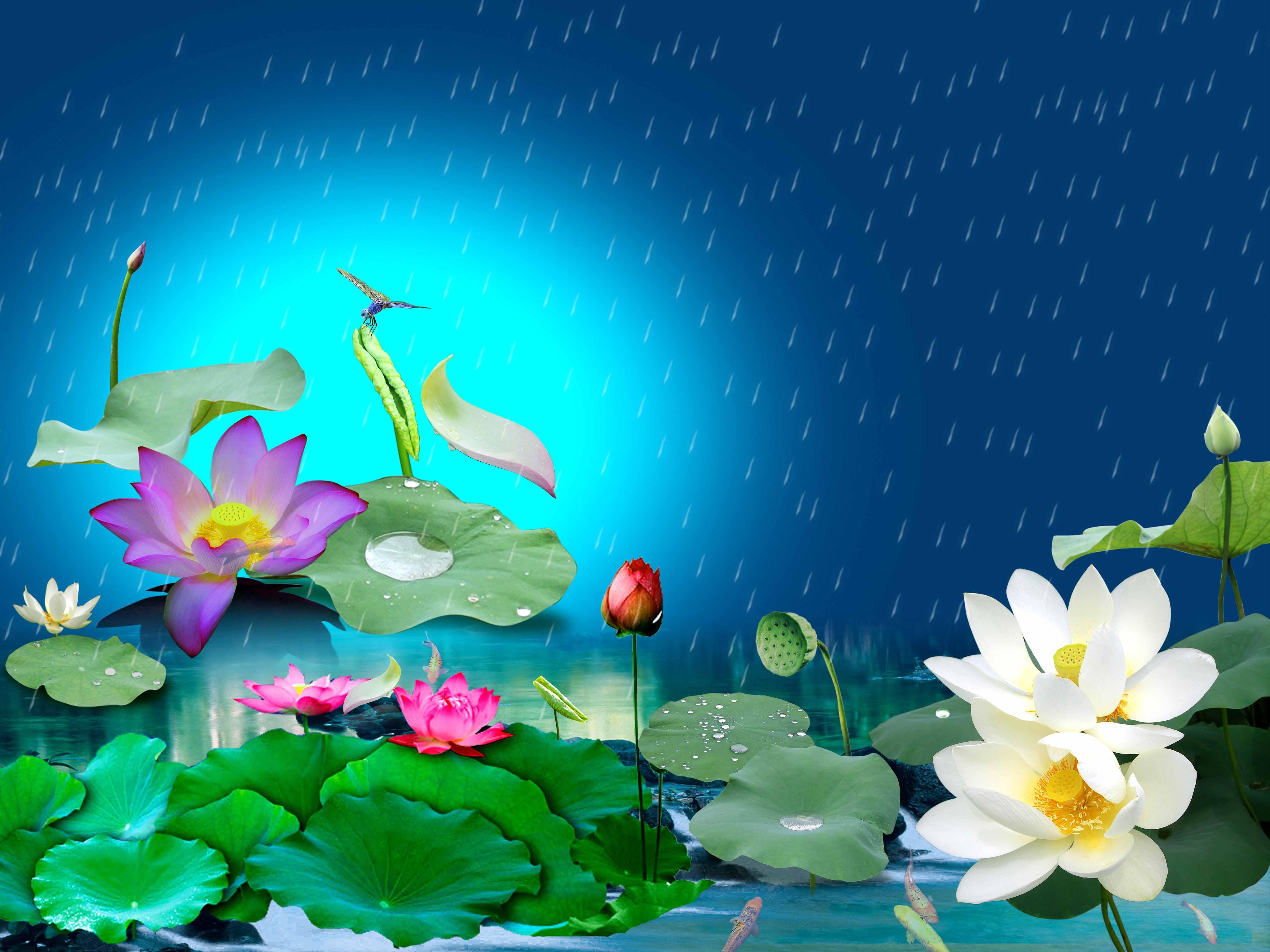 Hình ảnh background hoa lá sen