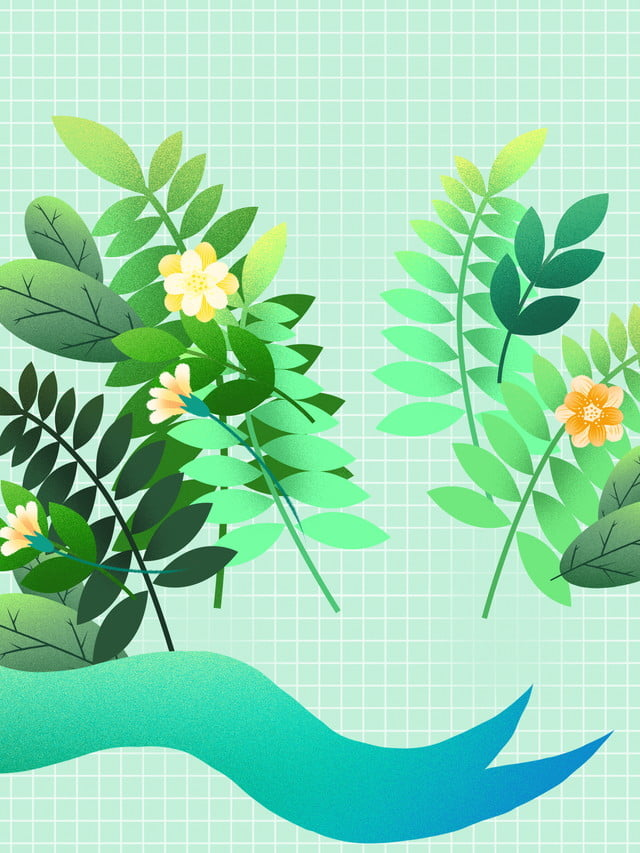 Nền background hoa lá
