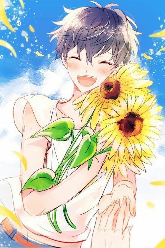 Anime hoa hướng dương boy