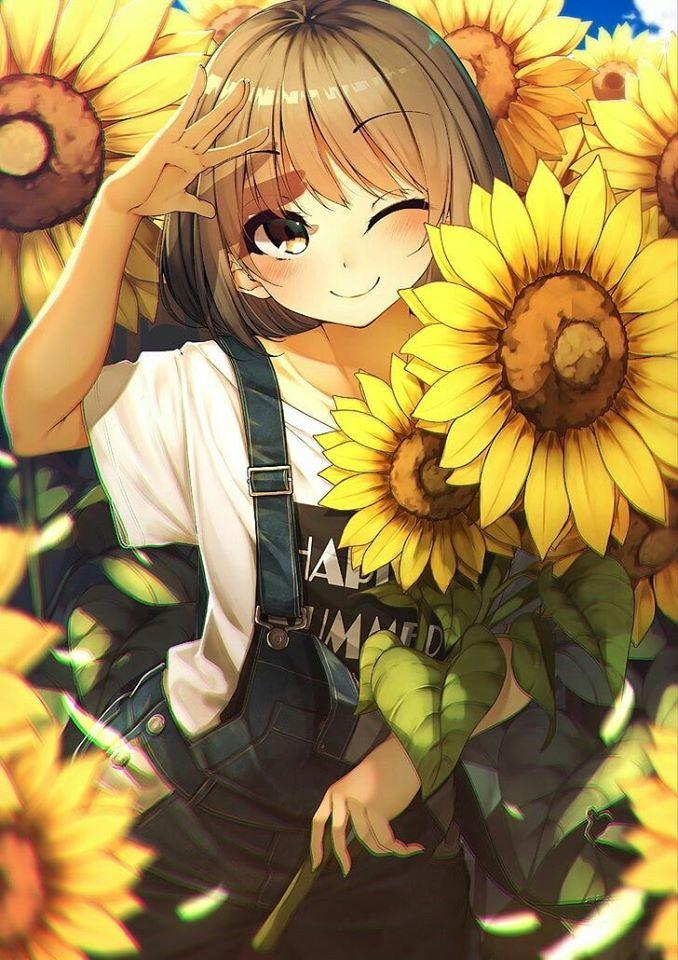 Anime hoa hướng dương girl
