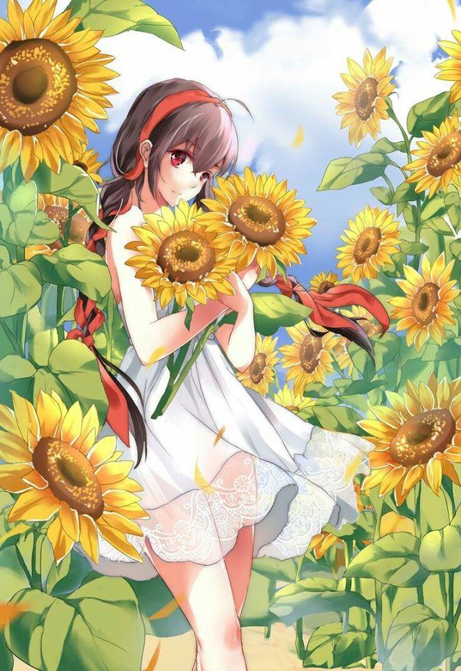 Hình ảnh đẹp anime hoa hướng dương