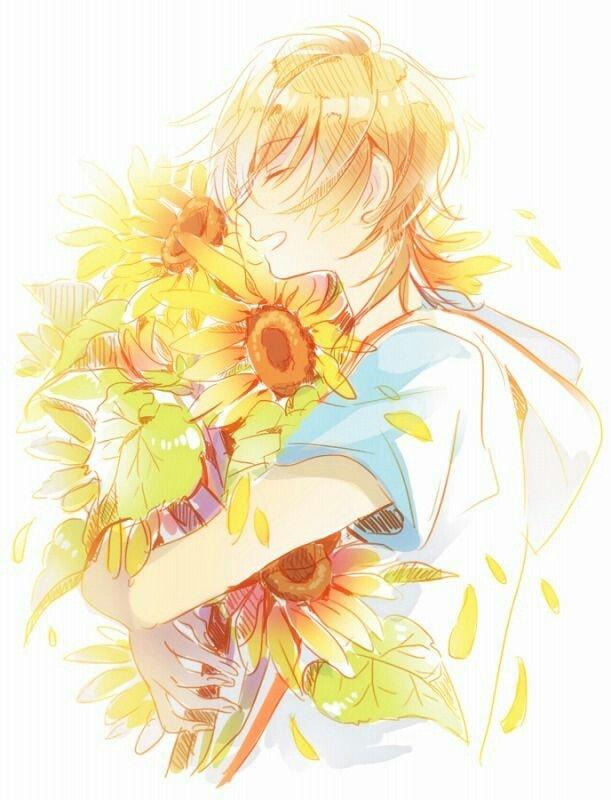 Hình vẽ anime hoa hướng dương