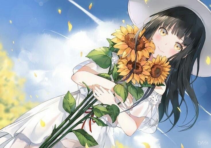 Tải ảnh anime hoa hướng dương