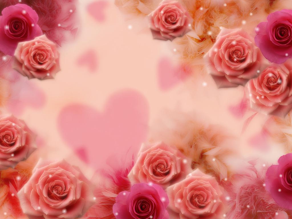 Background hoa hồng tình yêu