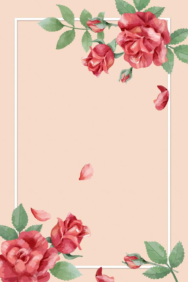 Background hoa hồng vẽ