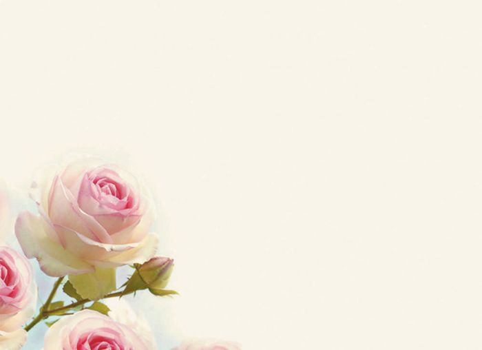 Background hoa màu hồng phấn