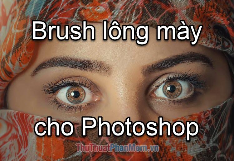 Brush lông mày cho Photoshop