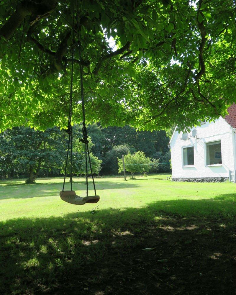 Ảnh bãi cỏ xanh trong vườn