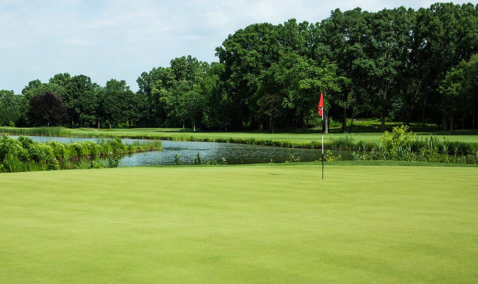Hình ảnh bãi cỏ xanh ở công viên
