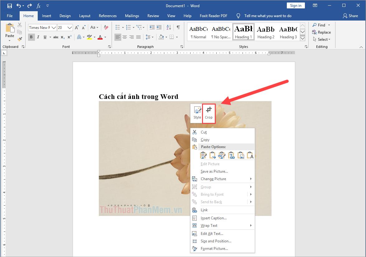 Click chuột phải vào hình ảnh trong Word và chọn Crop để mở công cụ cắt hình ảnh nhanh