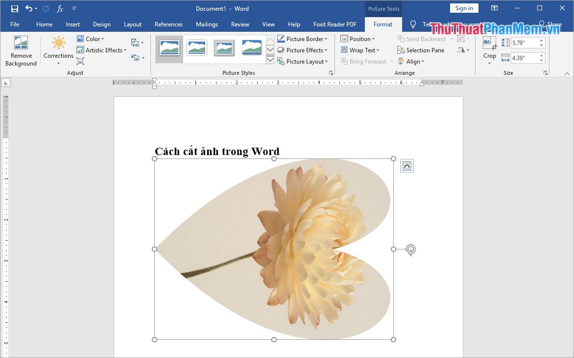 Word sẽ tự động cắt cho các bạn và các bạn có thể điều chỉnh được vị trí của hình ảnh bên trong khung