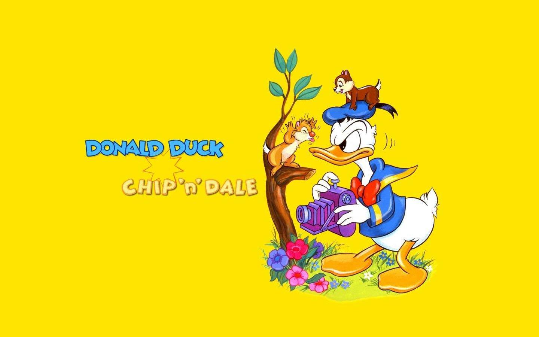 Ảnh vịt Donald cute