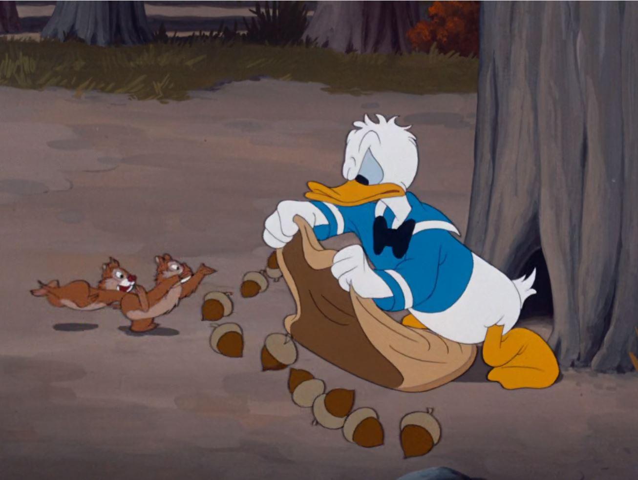 Ảnh vịt Donald dễ thương đáng yêu