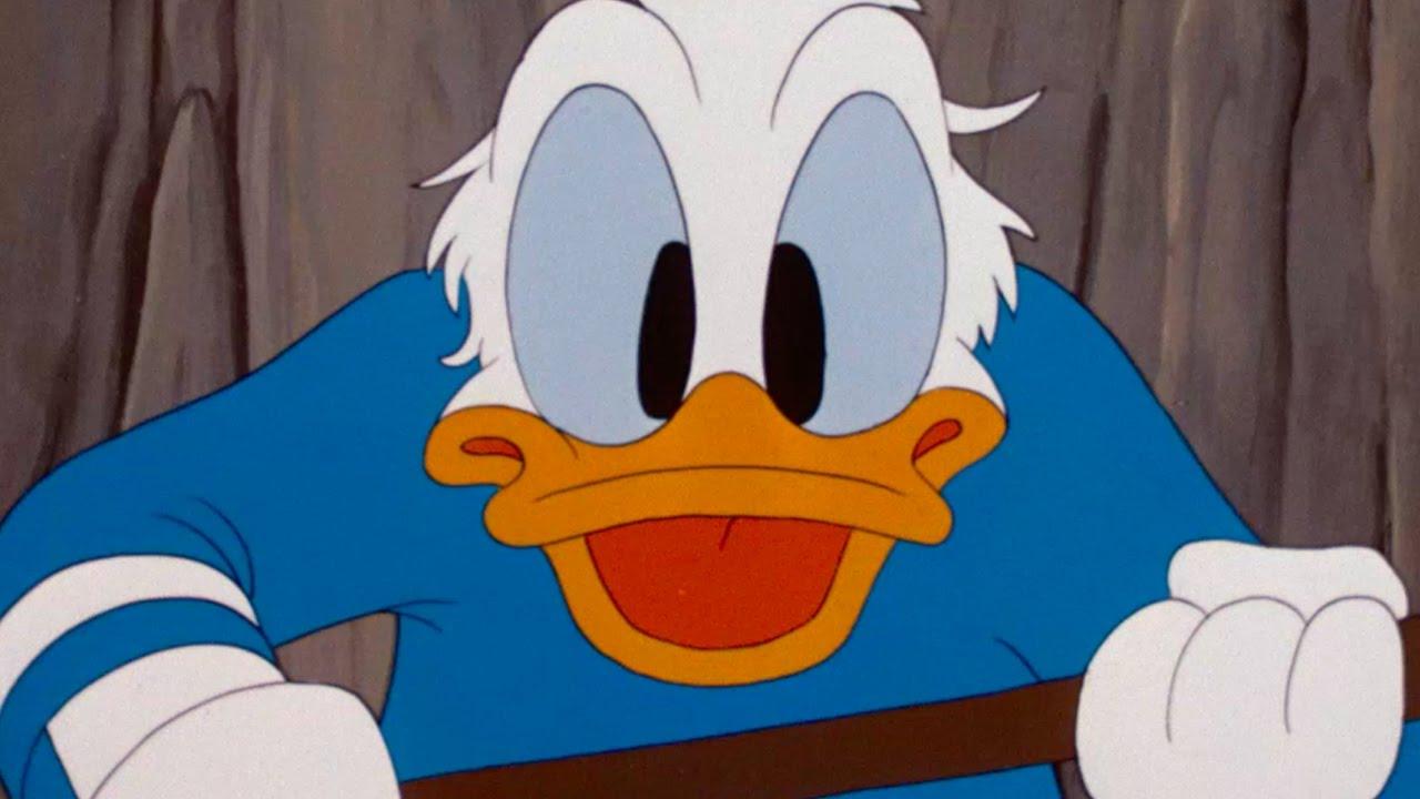 Ảnh vịt Donald hài hước