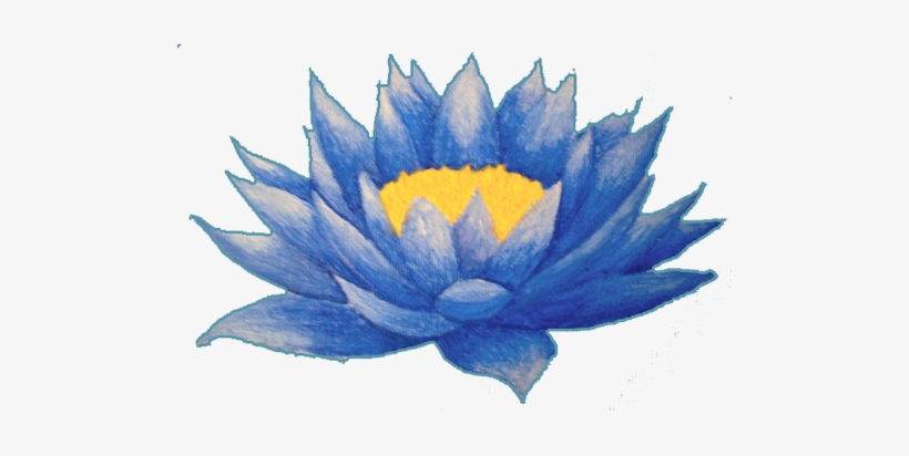 Hình ảnh bông hoa sen xanh biển cực đẹp