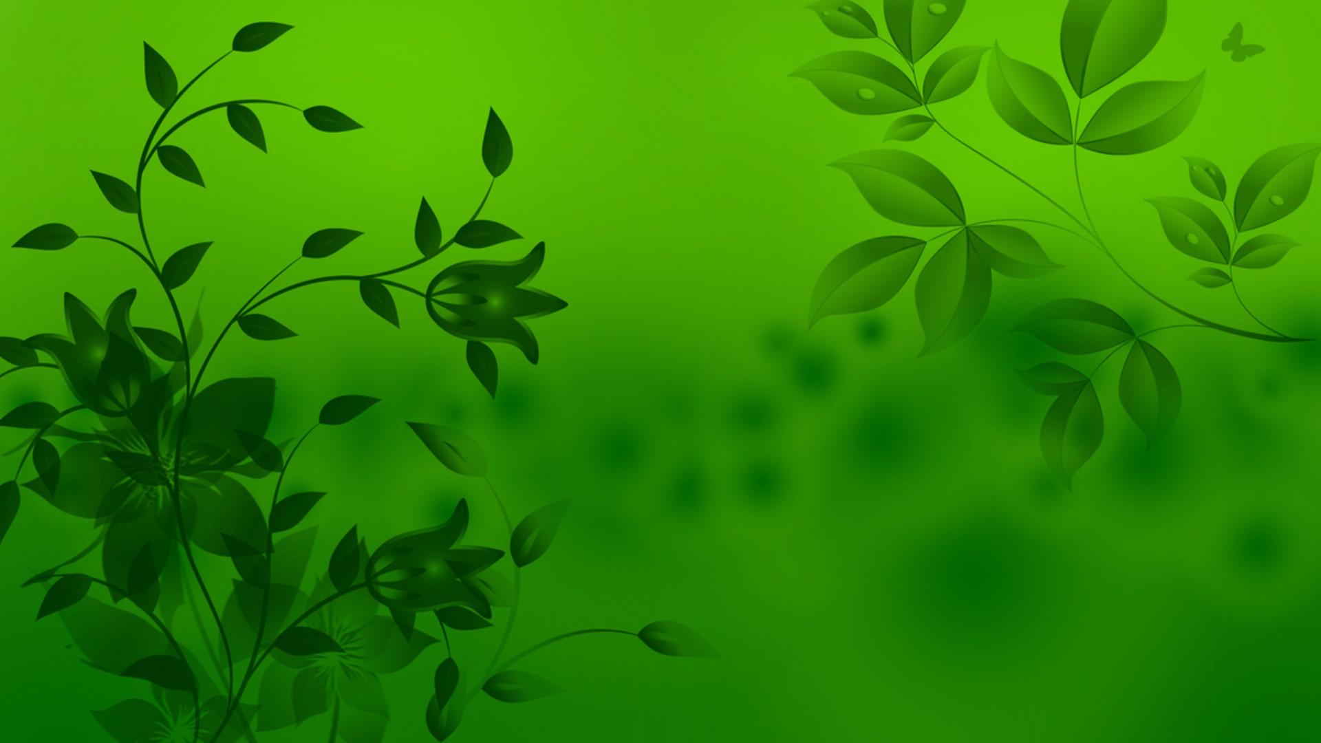 Hình nền xanh lá đơn giản