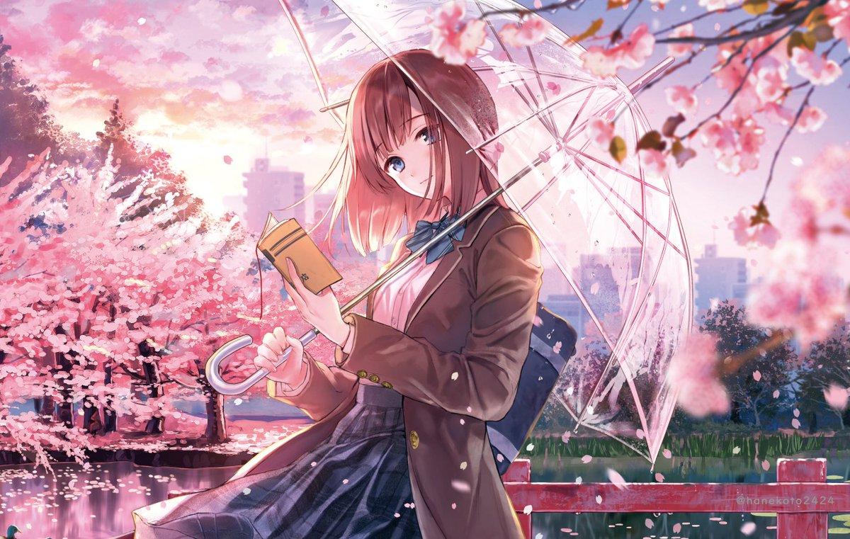 Ảnh anime hoa anh đào và  cô gái