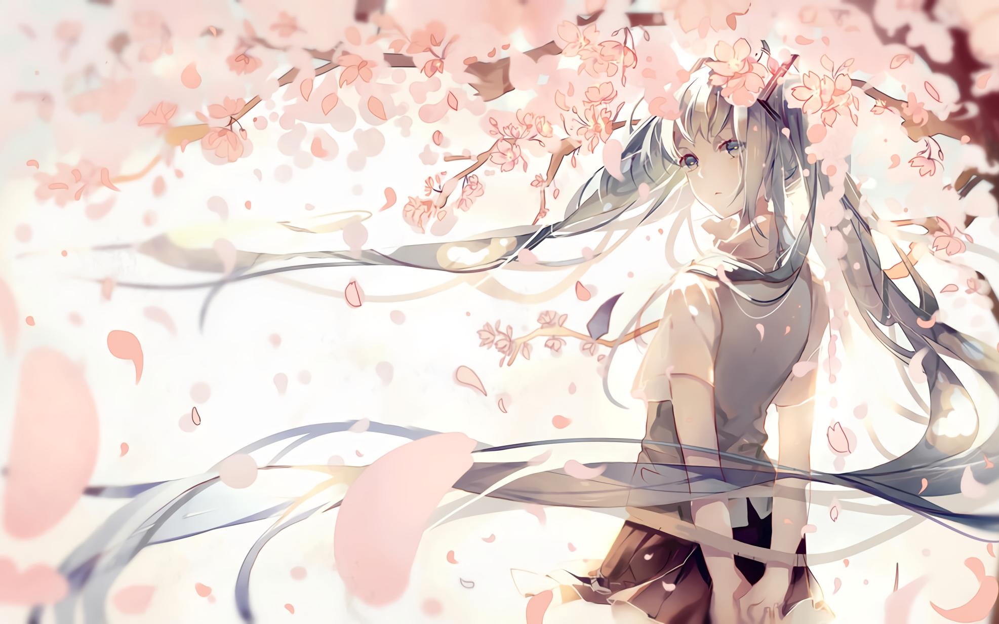 Ảnh anime hoa anh đào