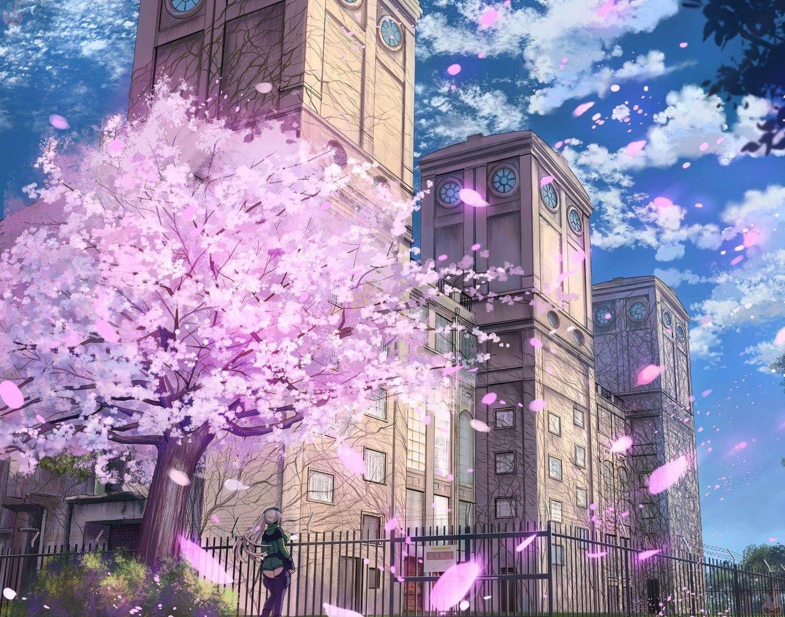 Ảnh hoa anh đào anime rụng