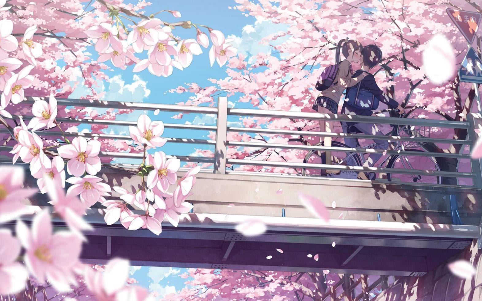Anime hoa anh đào lãng mạn