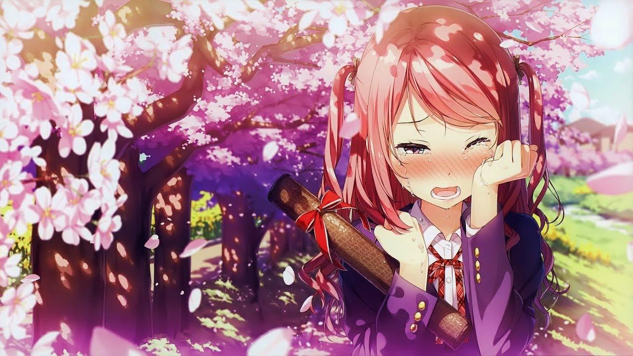 Khung cảnh anime hoa đào buồn