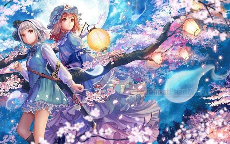 Những hình ảnh hoa anh đào anime đẹp