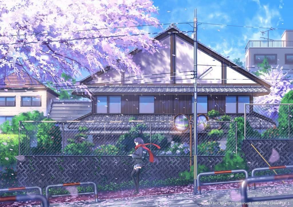 Phong cảnh hoa anh đào anime đẹp