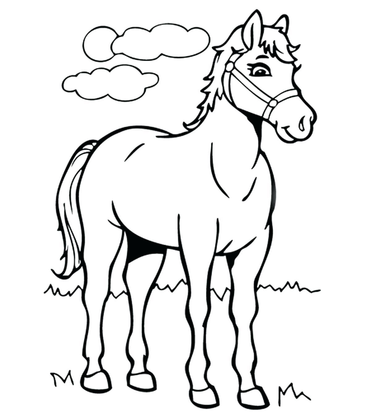 Tranh tô màu con ngựa trưởng thành
