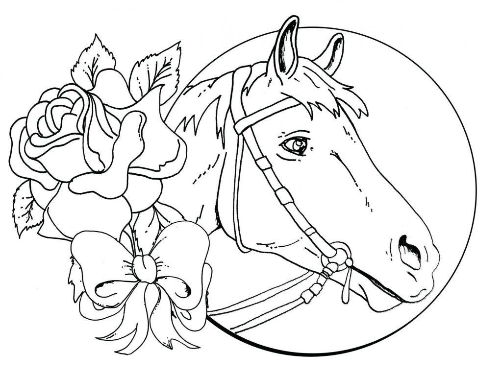 Tranh tô màu đầu chú ngựa đẹp