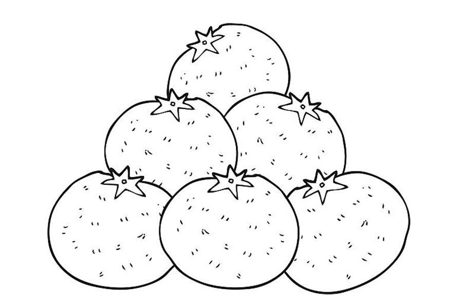 Tranh tô màu những quả cam