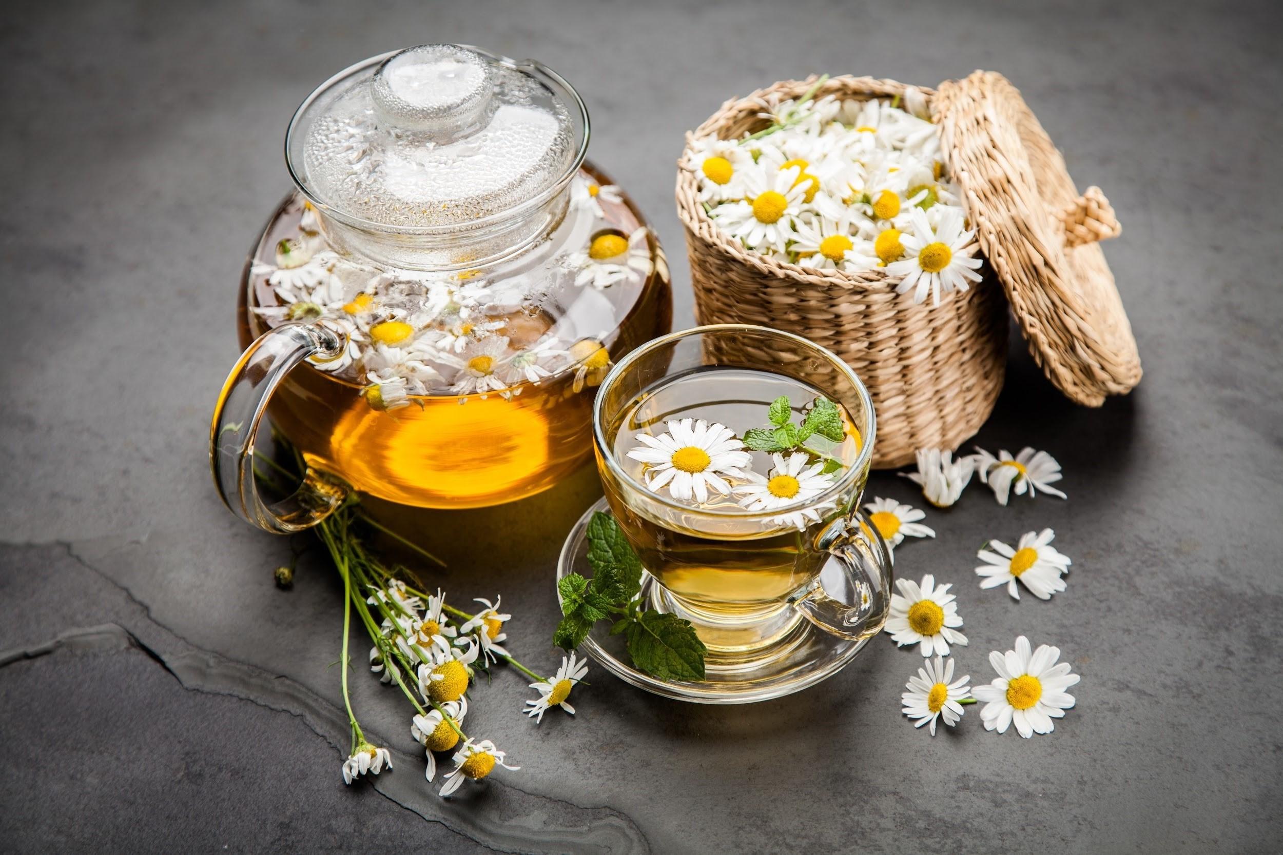 Ảnh trà hoa cúc trắng đẹp
