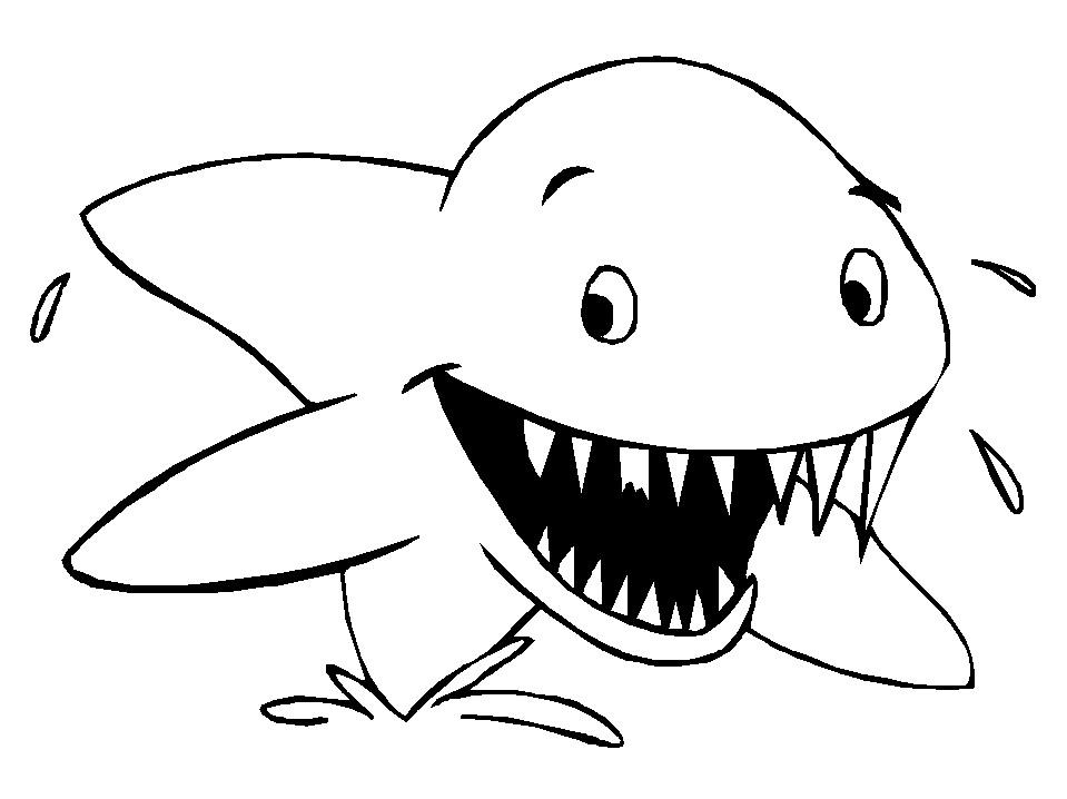 Tranh tô màu cá mập cho bé