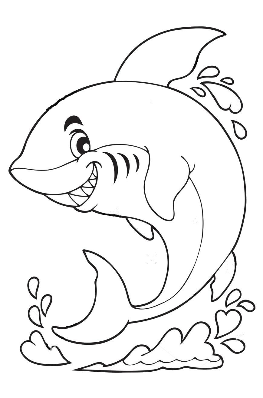 Tranh tô màu cá mập cute