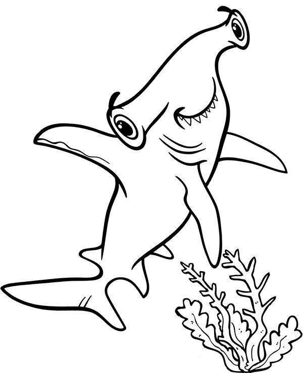 Tranh tô màu cá mập đầu búa đẹp nhất