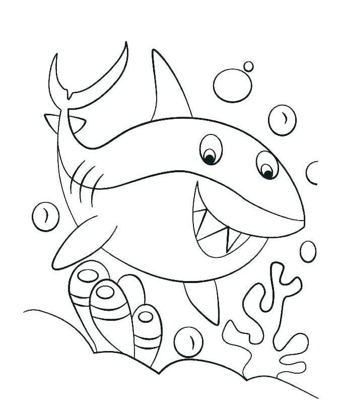 Tranh tô màu cá mập đơn giản