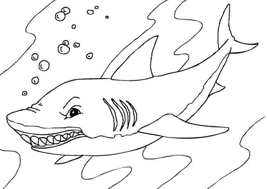 Tranh tô màu cá mập hung dữ