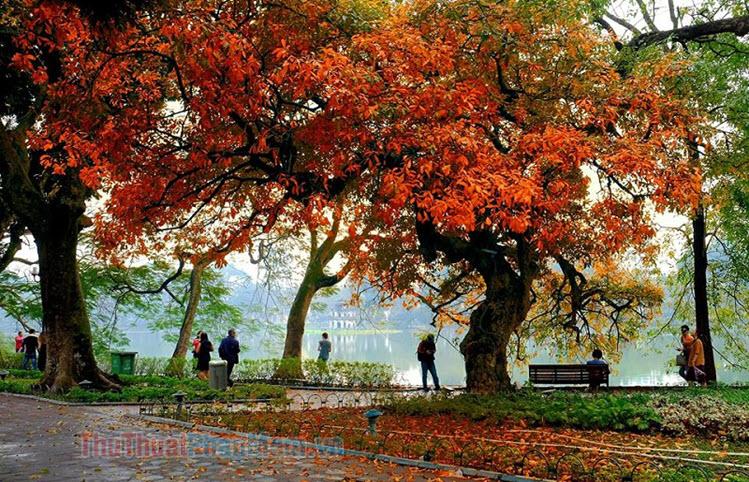 Ảnh đẹp thiên nhiên Việt Nam