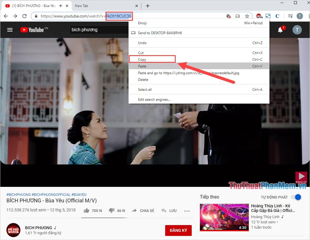Copy phần ID Video trên thanh URL