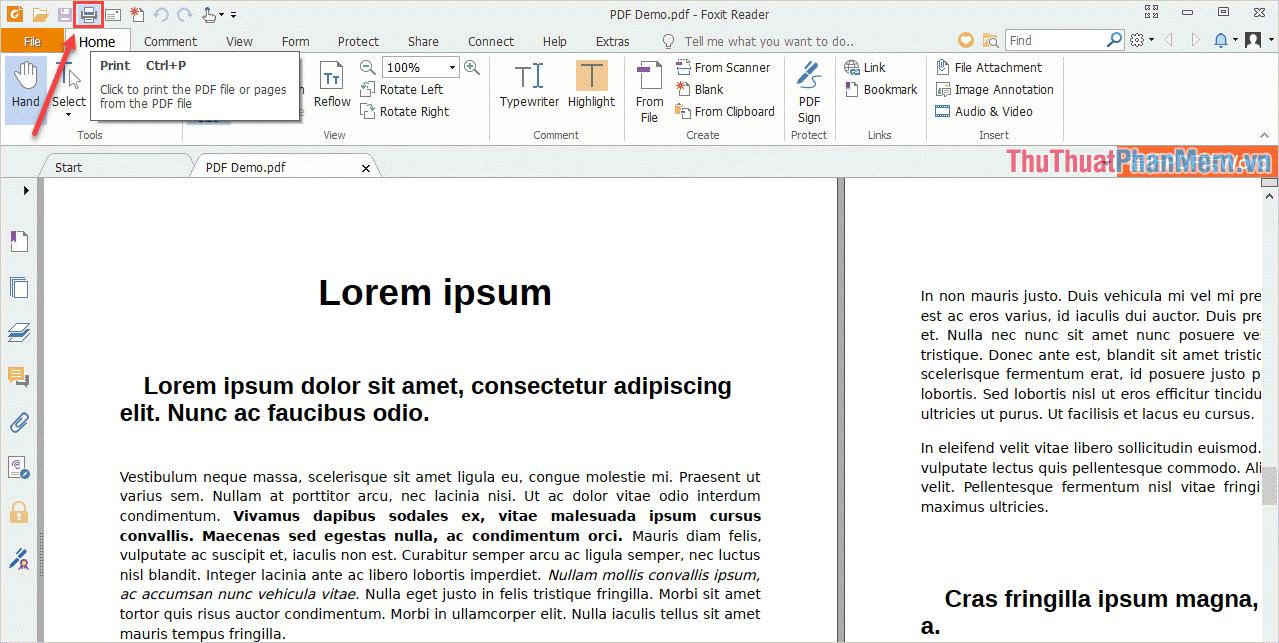 Nhấn vào biểu tượng Máy In (Ctrl +P)