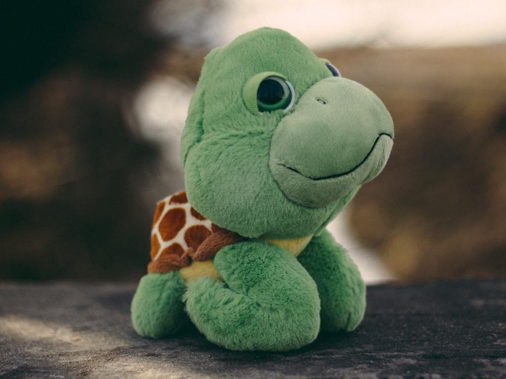 Ảnh con rùa bằng bông đẹp