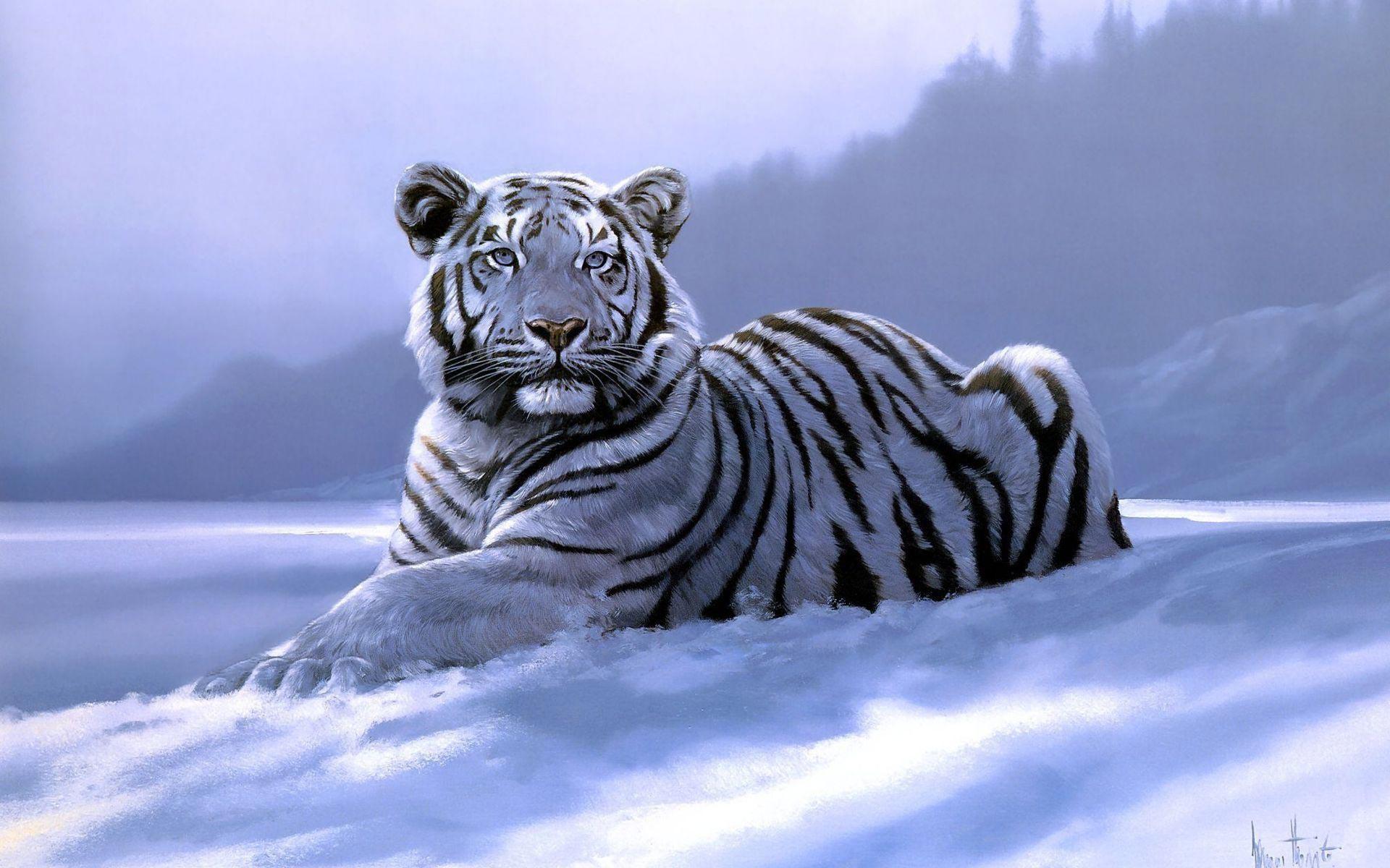 Hình ảnh con hổ oai hùng