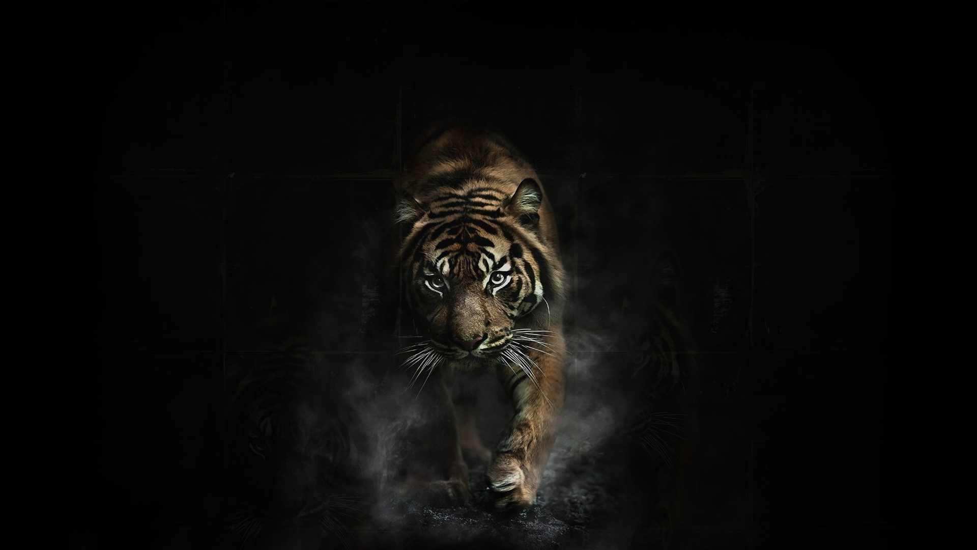 Hình ảnh con hổ trên nền đen cực ngầu