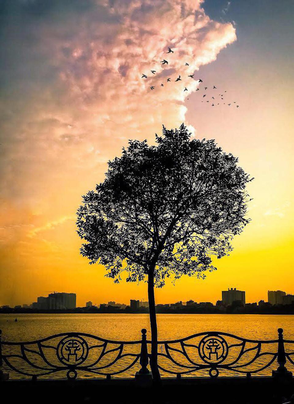 Ảnh nền Hồ Tây Hà Nội