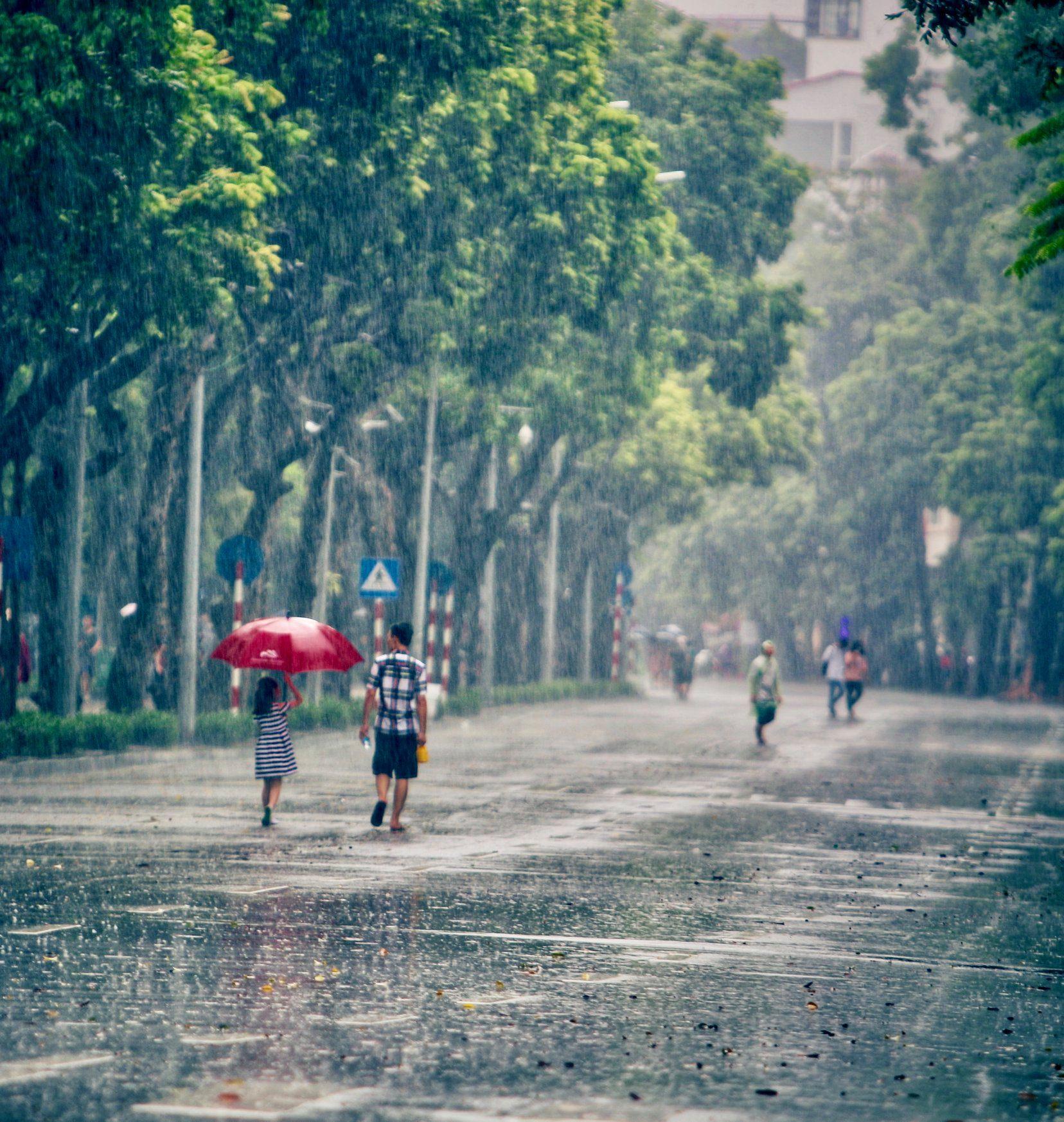 Hình nền Hà Nội ngày mưa