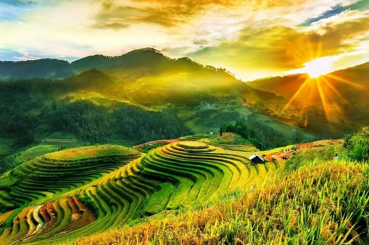 Ảnh đẹp ruộng bậc thang Việt Nam
