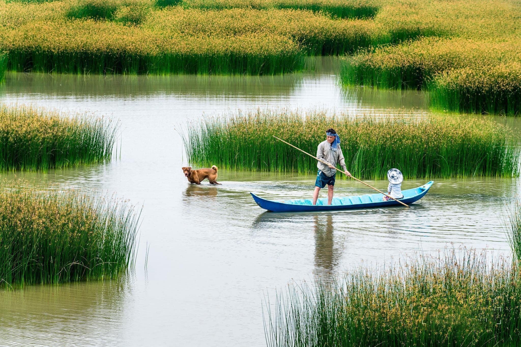 Ảnh đẹp vùng sông nước Việt Nam