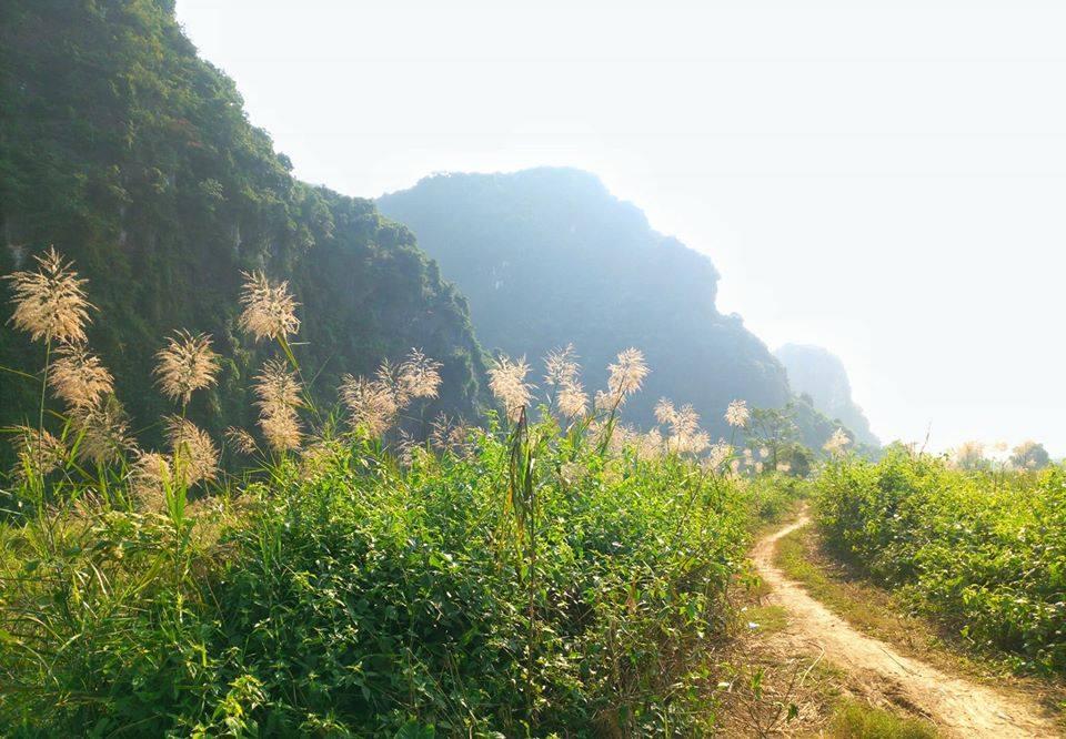 Ảnh thiên nhiên núi đồi tại Việt Nam